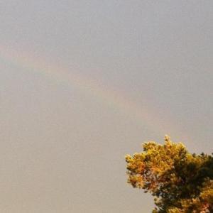 goldlicht-regenbogen-balo